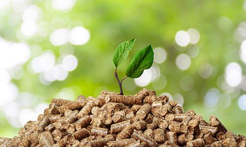 instalacion_biomasa_2